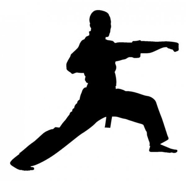 Karate-club-la-ferte-alais.jpg